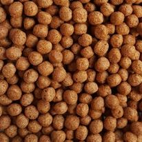 Current Price of Tilapia Fish Feed in South Africa 2021